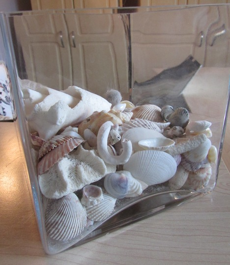 What To Do With All Those Seashells Youve Collected Create A